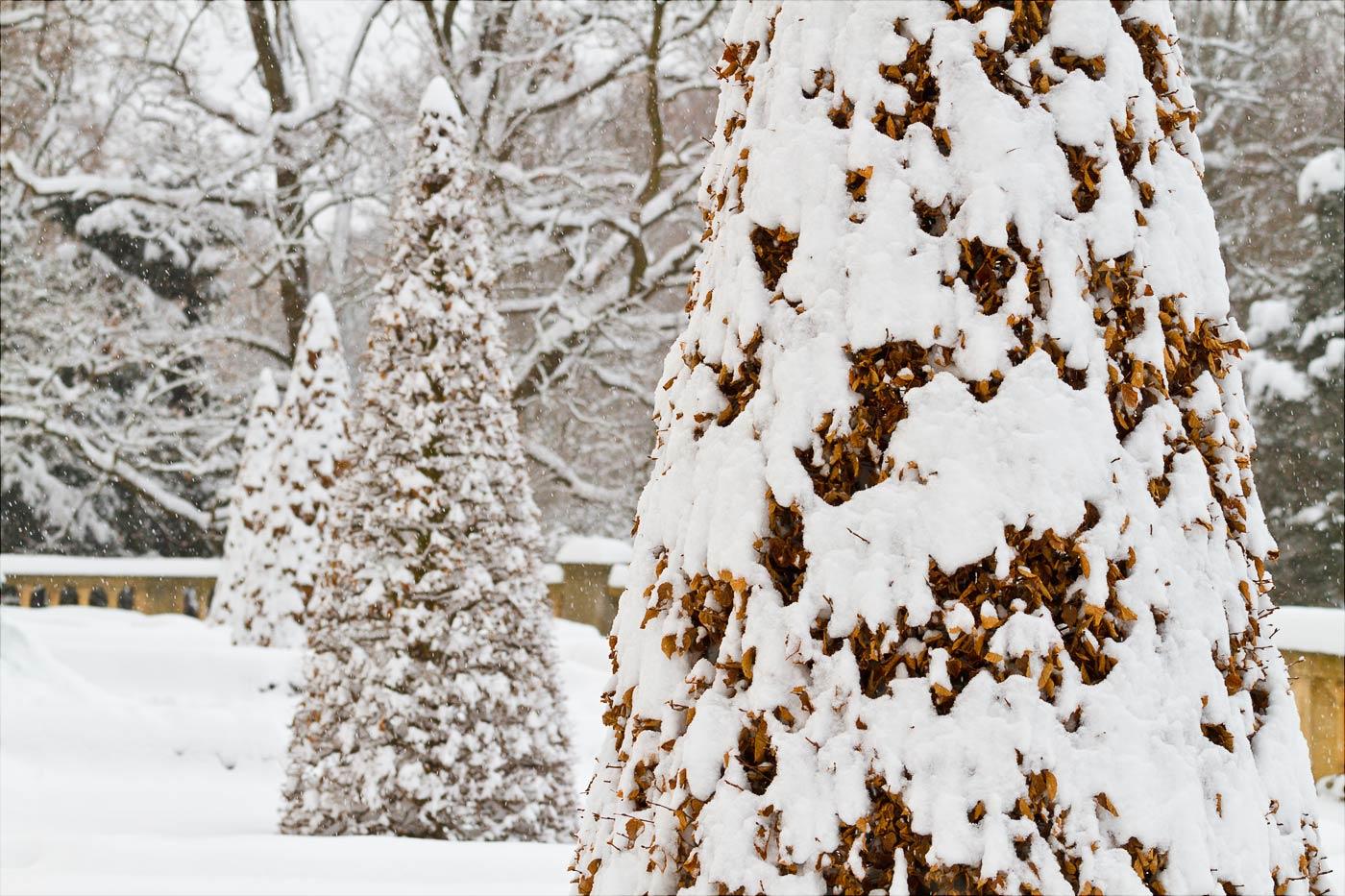 Зима в Конопиште