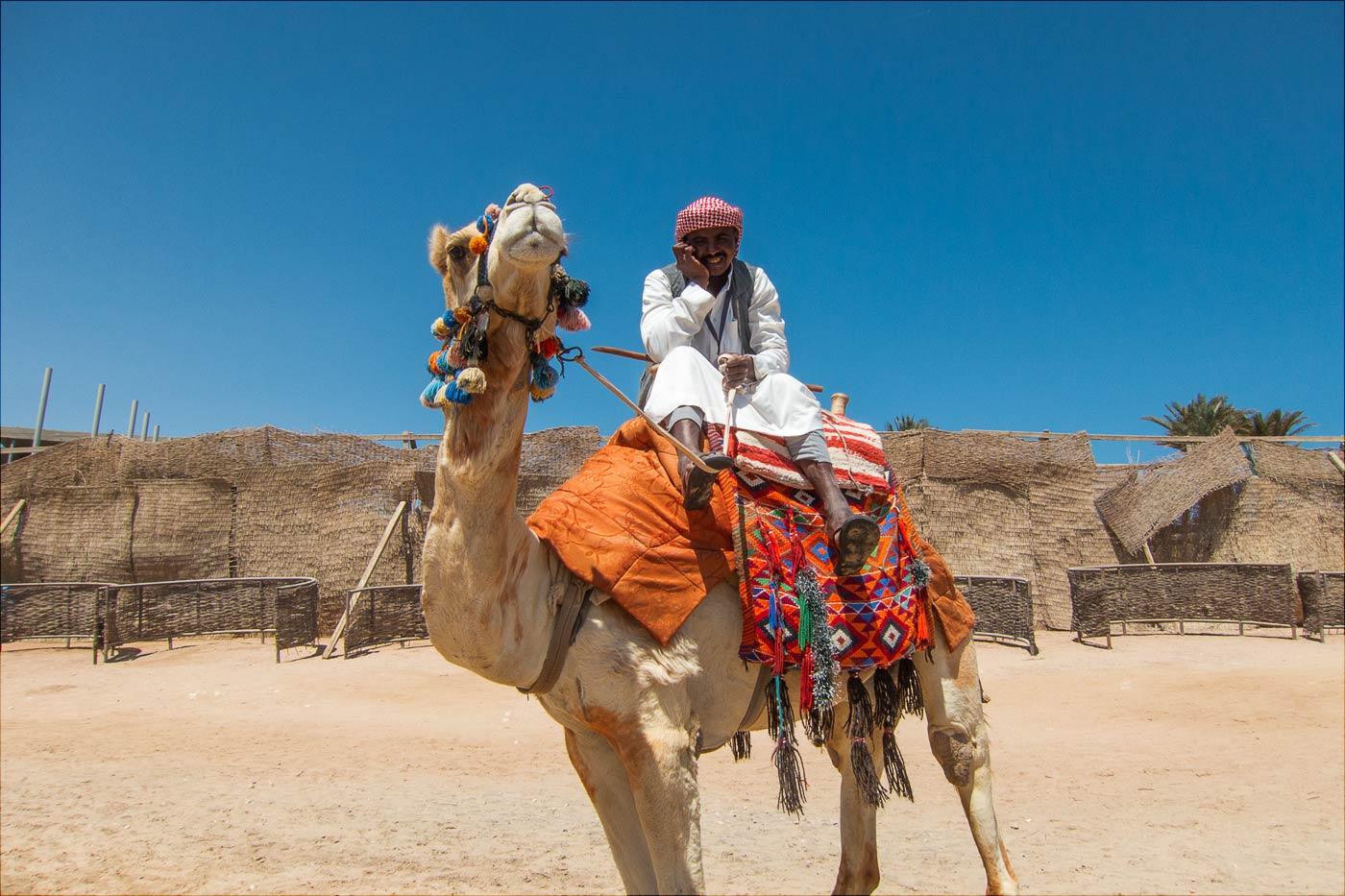 Египет. В этот день год назад