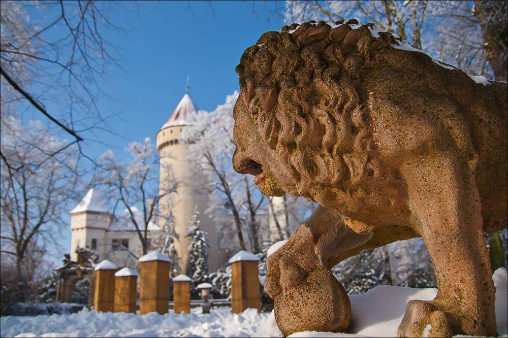Заснеженные аллеи Конопиштского парка, Чехия