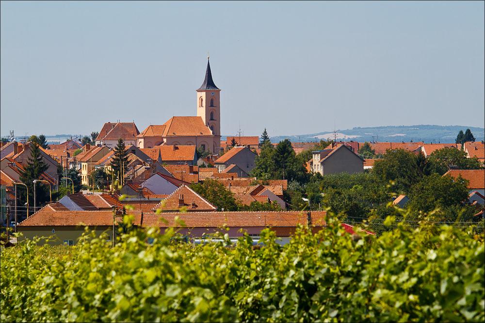 Поселок Велка Биловица - центр виноделия в южной Моравии, Чехия