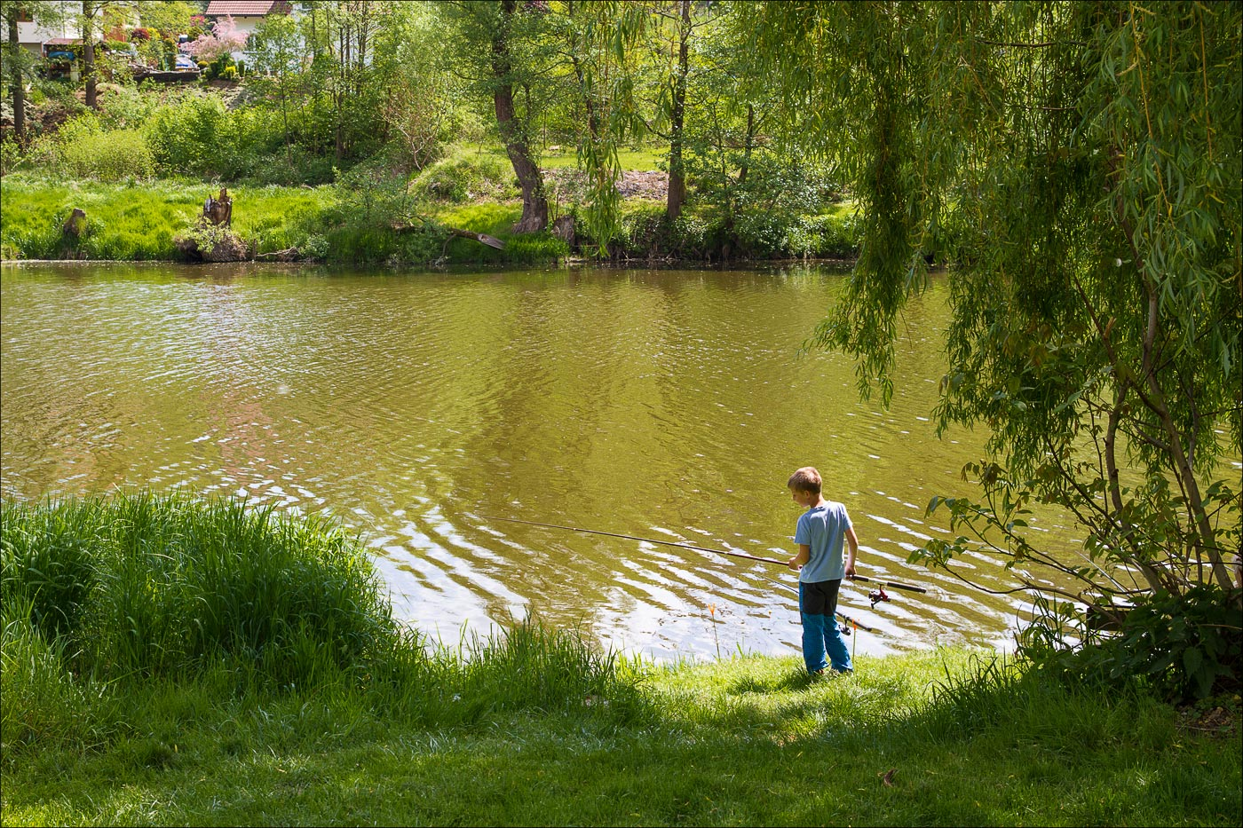 Чехия. Рыбалка на реке Сазаве