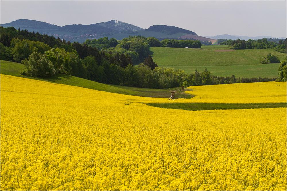 http://countryczech.com/wp-content/uploads/2015/07/03/20150517-103323_Ondrejov.jpg