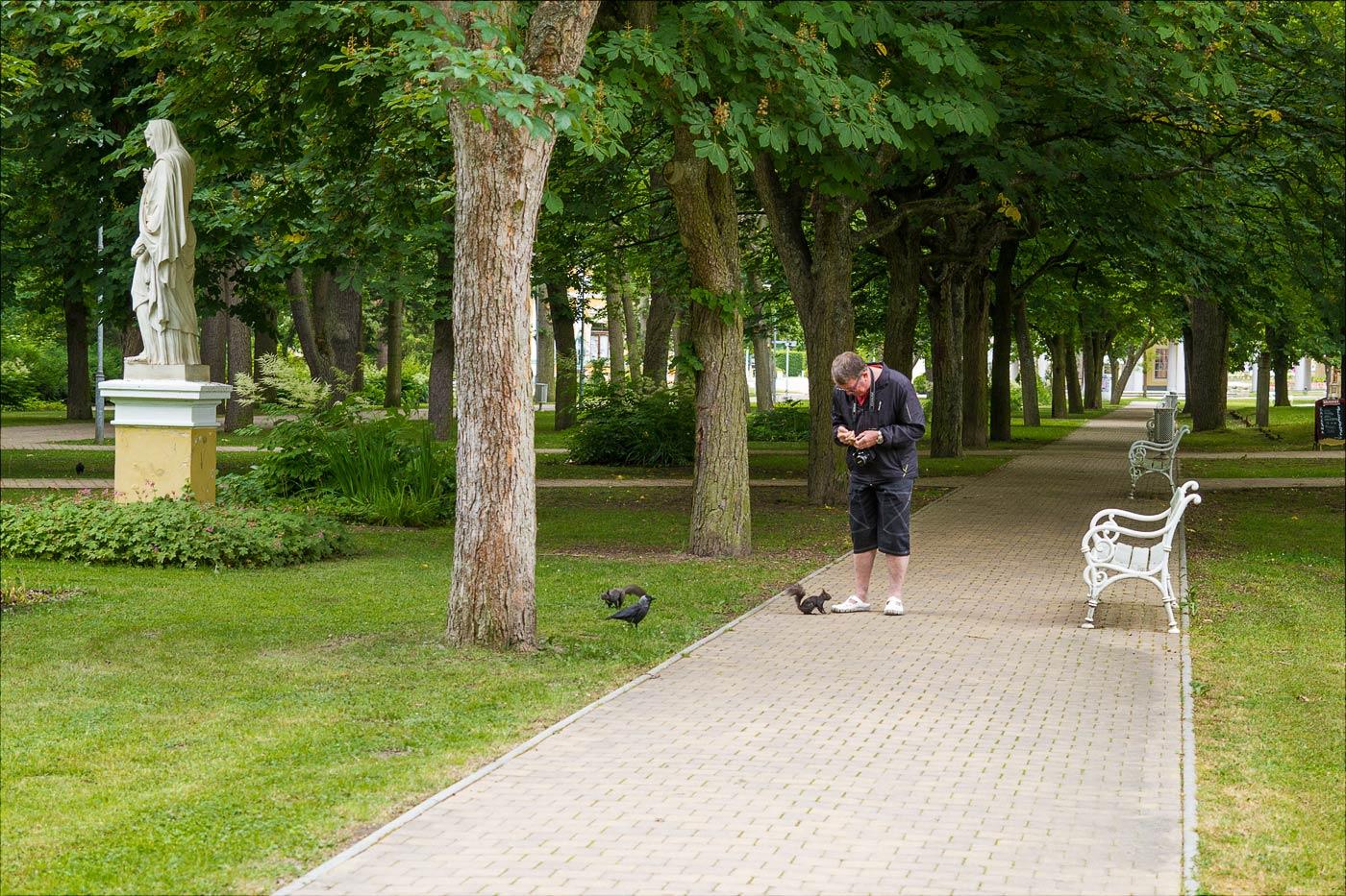 Белки в парке Франтишковы Лазне, Чехия