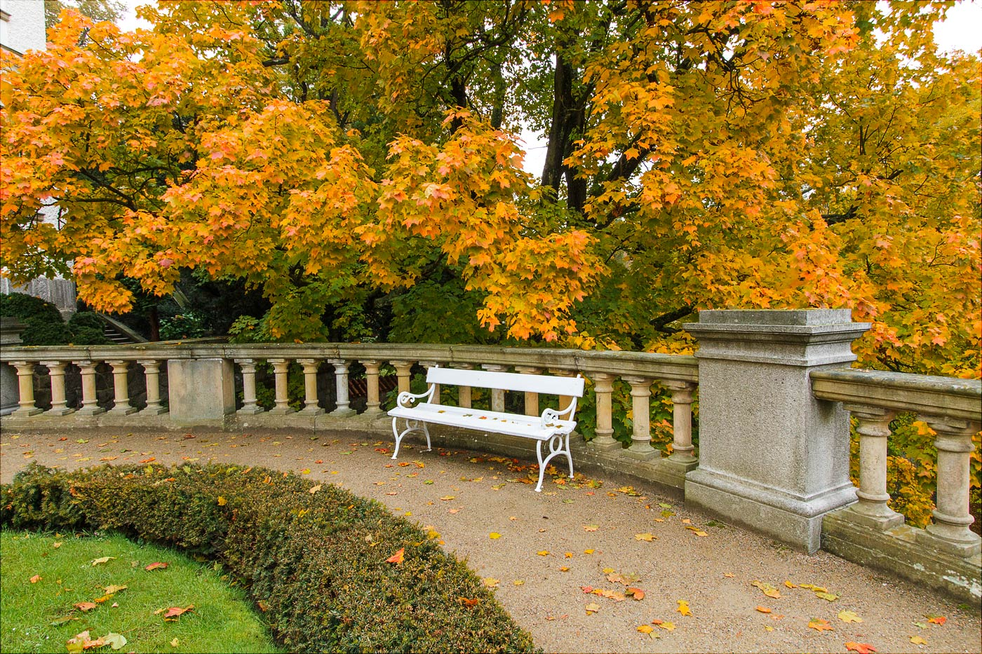 Осень в Конопиште, Чехия