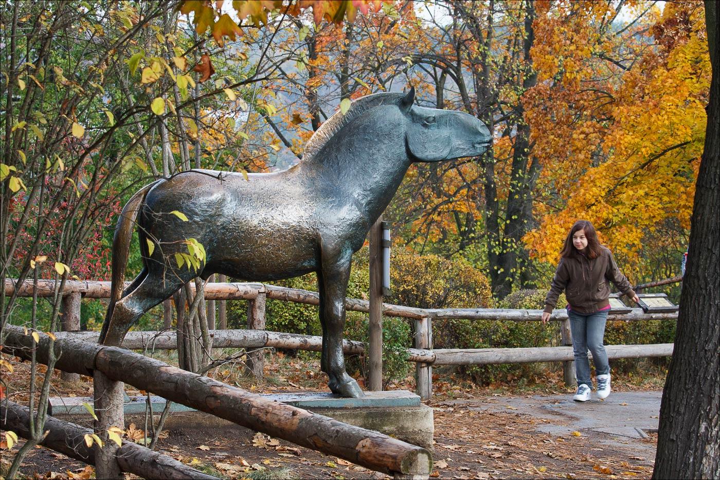 Осень в Пражском зоопарке, Чехия