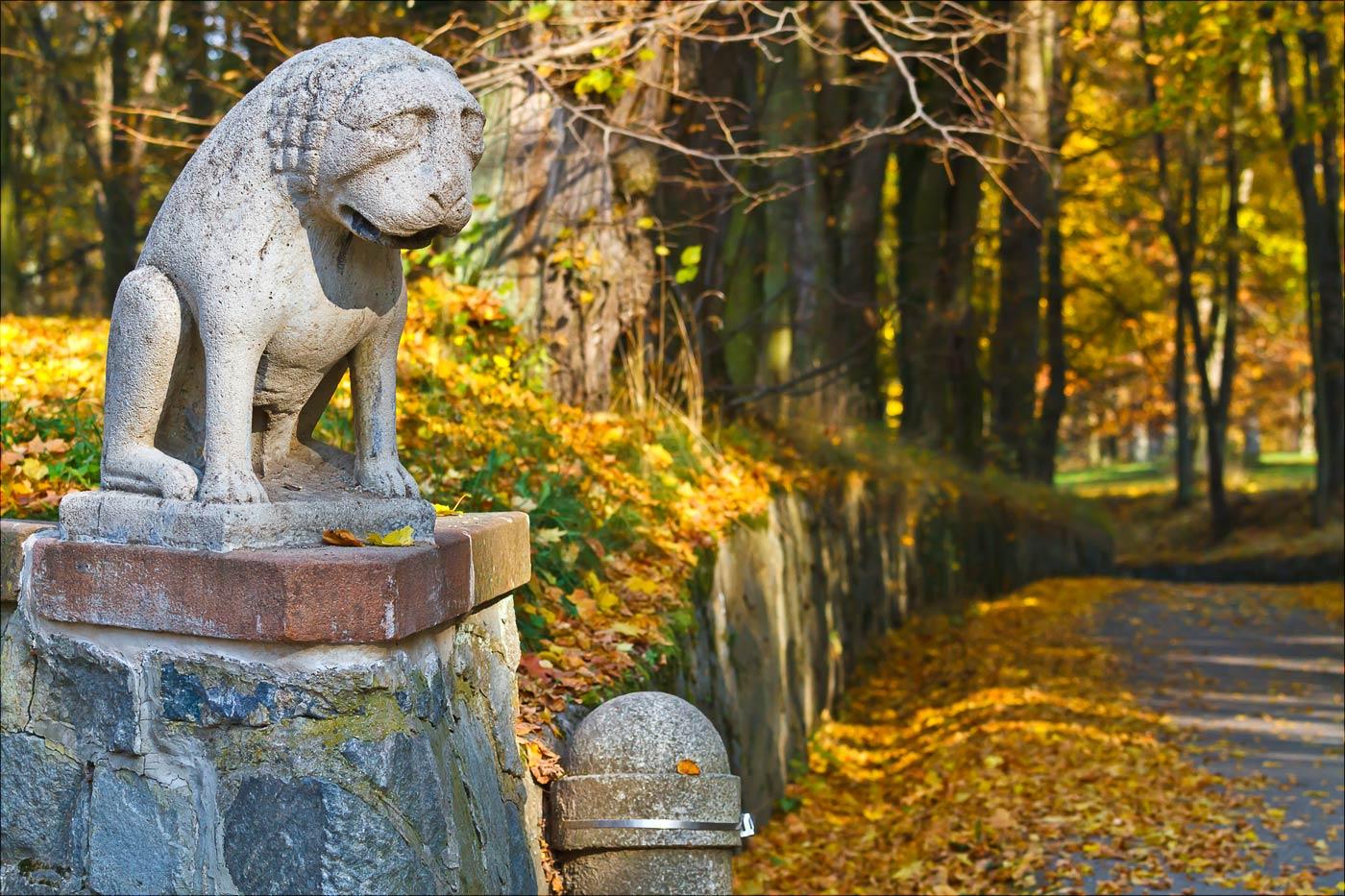 Золотая осень в Конопиштском парке, Чехия