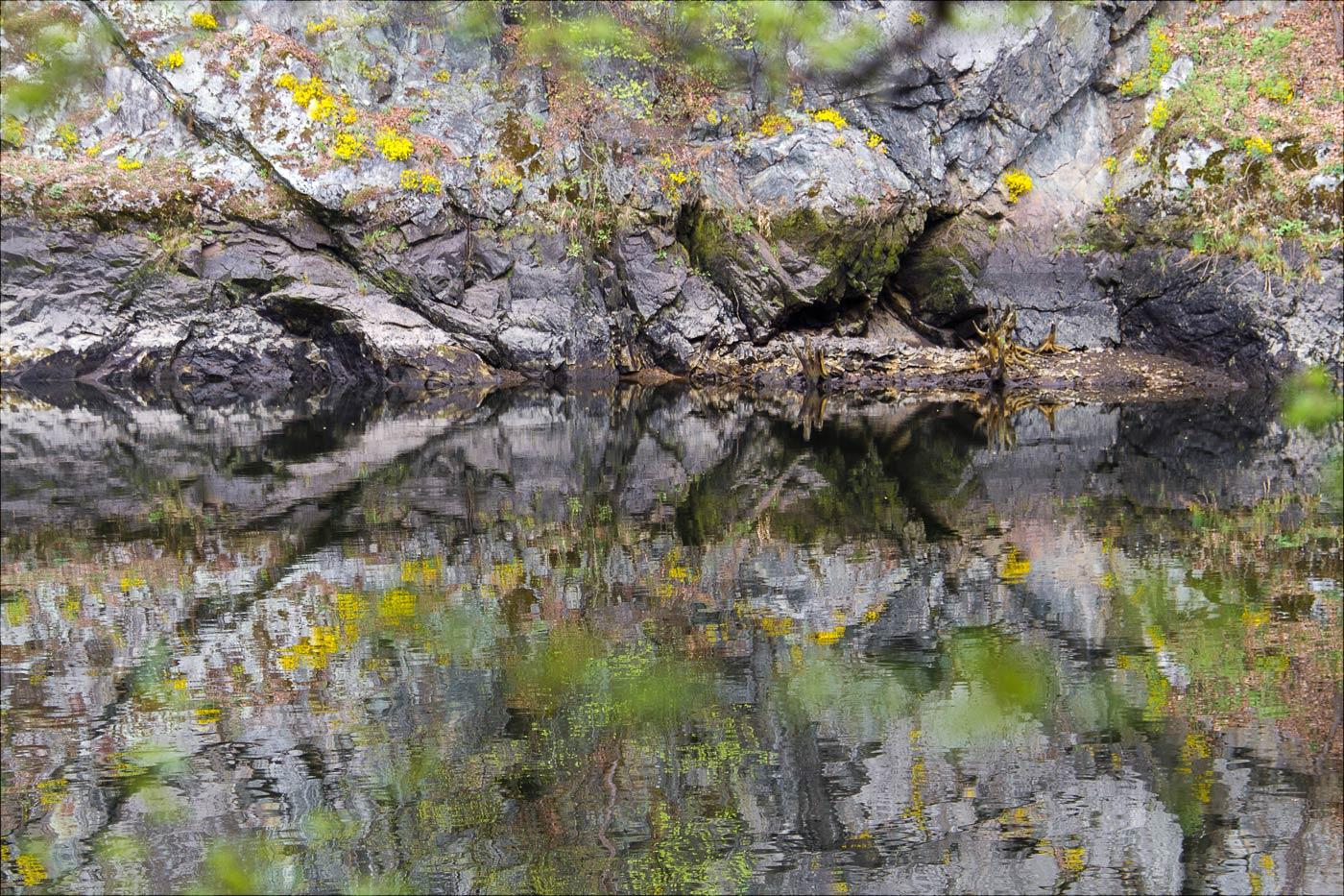 Отражение, берег Влтавы у Святоянских стремнин