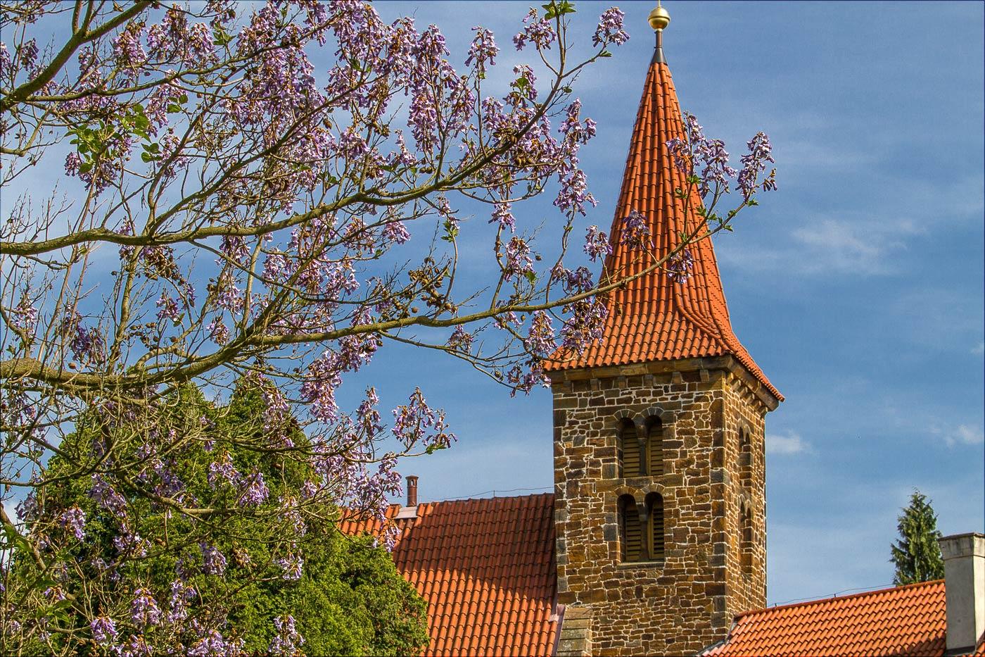 Пругоницкий дворец весной