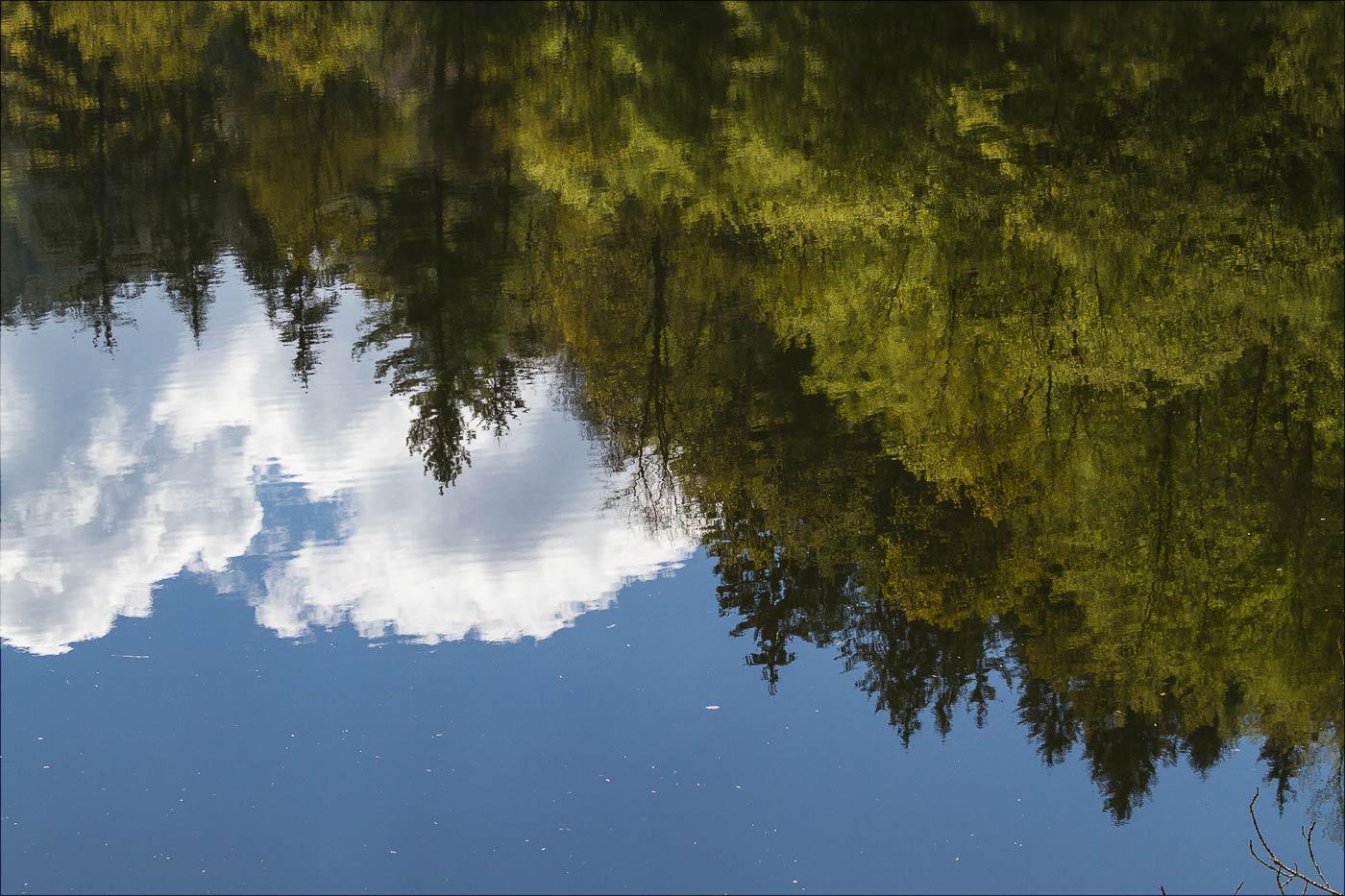 Тихая вода на Влтаве