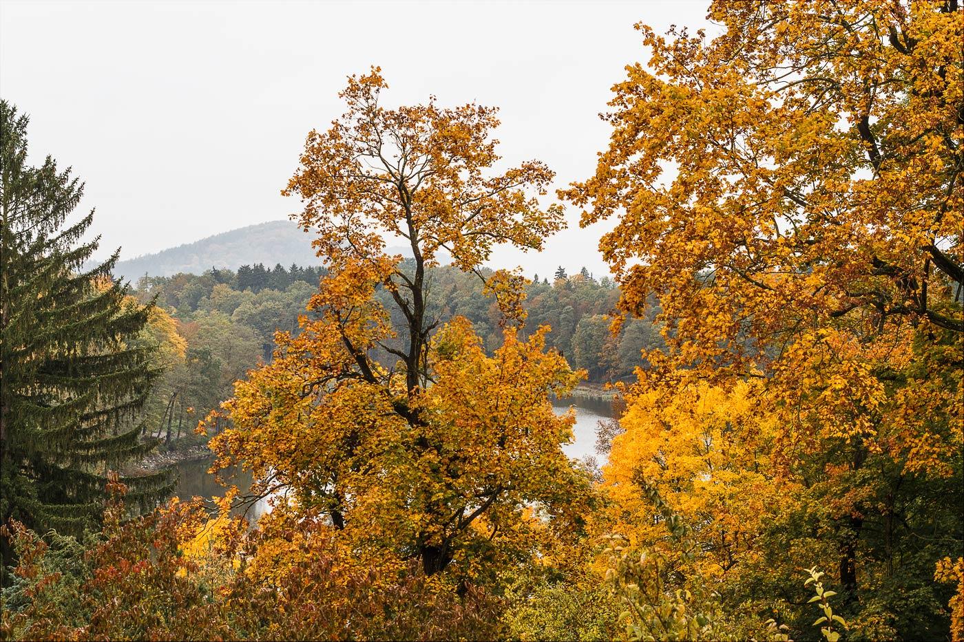Конопиште, золотая осень