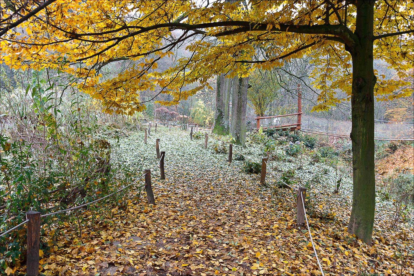 Поздняя осень в зоо Злин