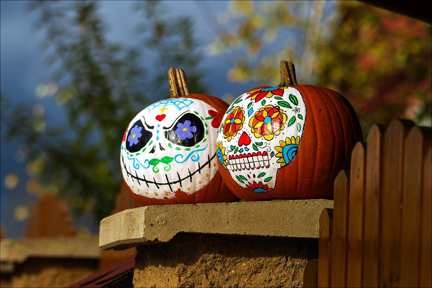 http://countryczech.com/wp-content/uploads/2016/11/photos/20161030-125714_Halloween.jpg