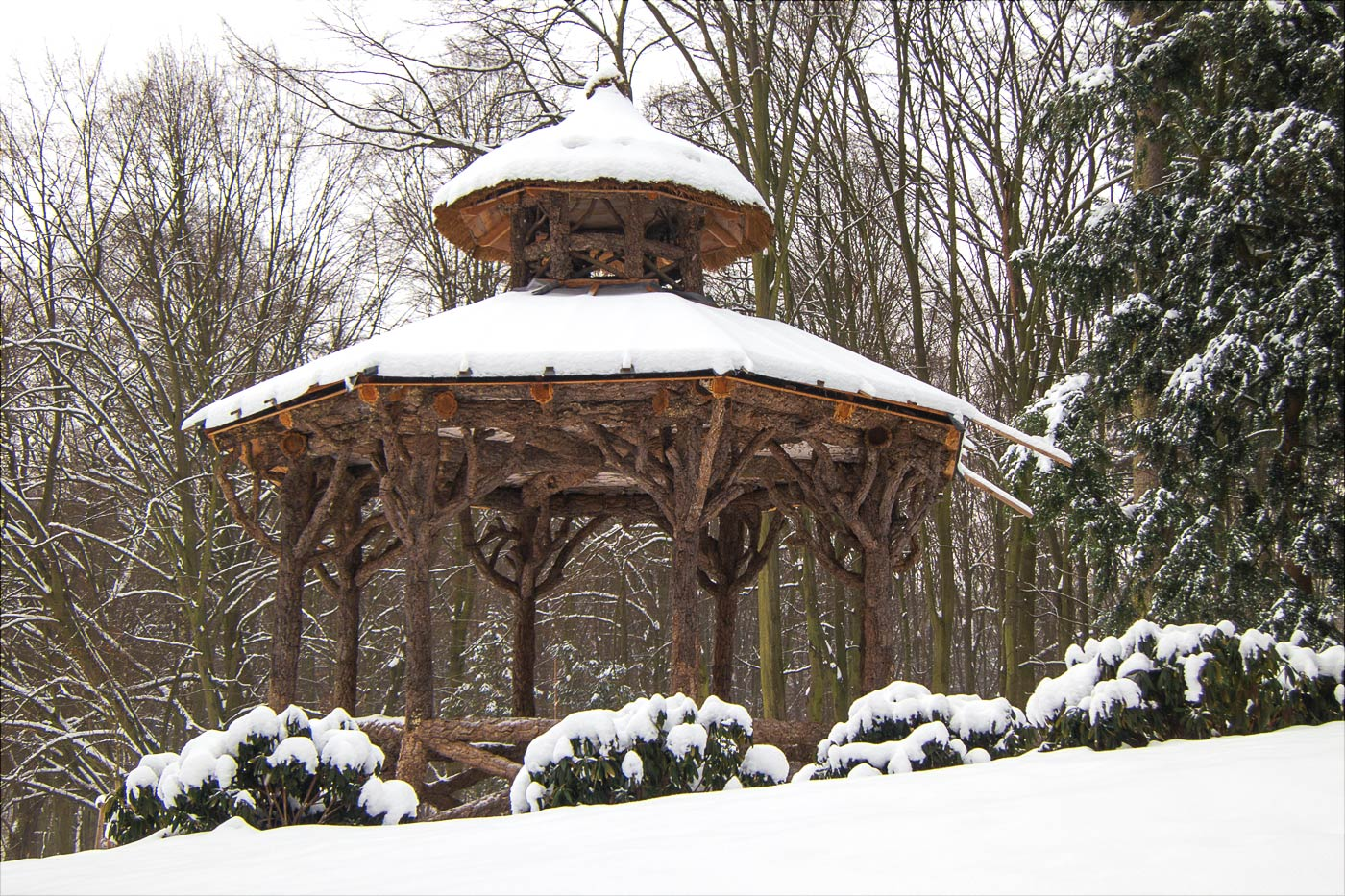 Снежная зима в Конопиштском парке