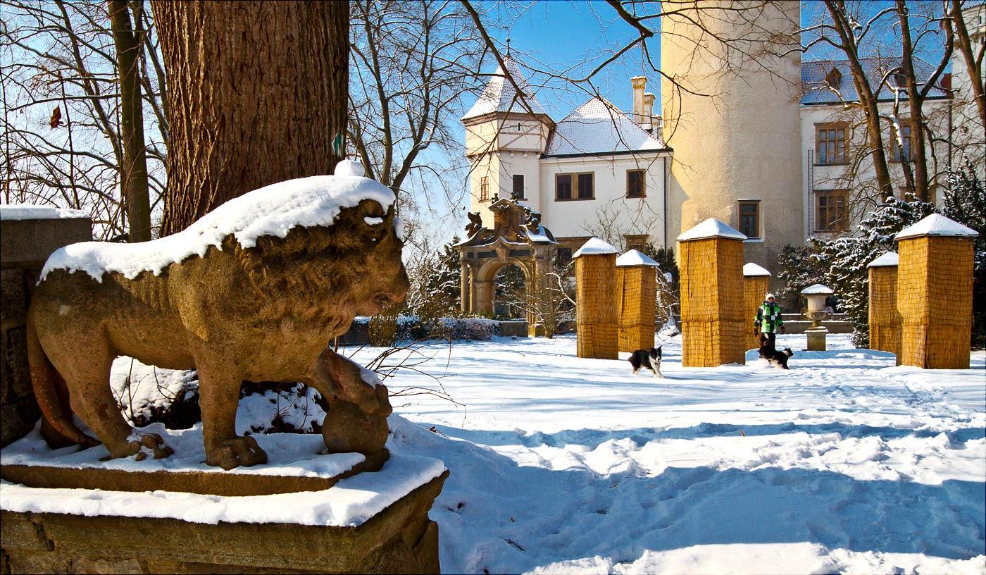 Зима в Конопиштском парке