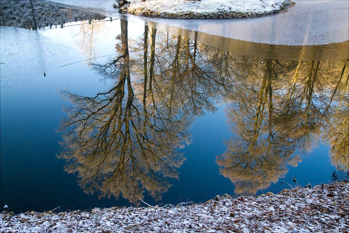 Отражение, ясный зимний день у Конопиште