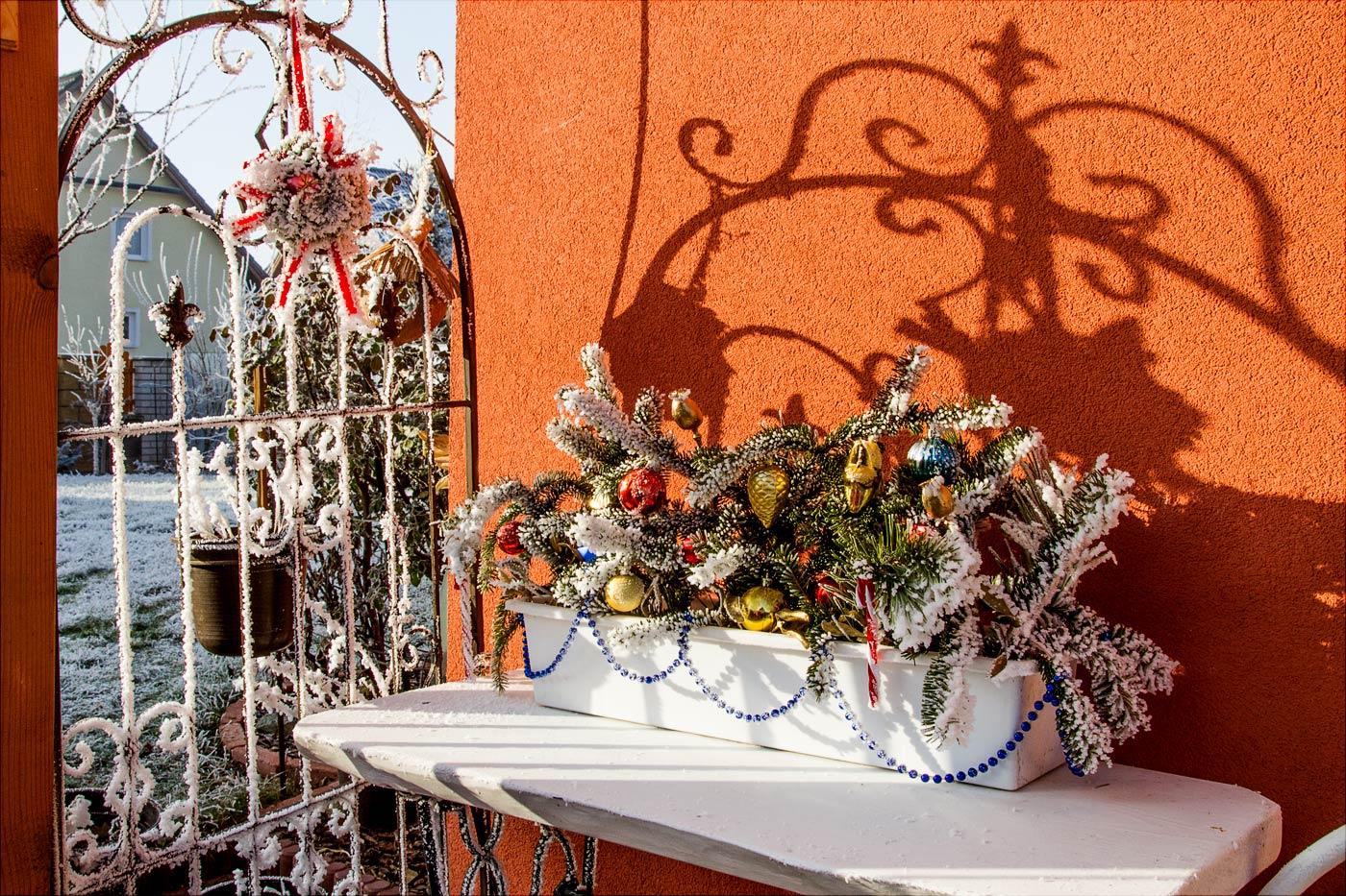 Иней на зимней декорации