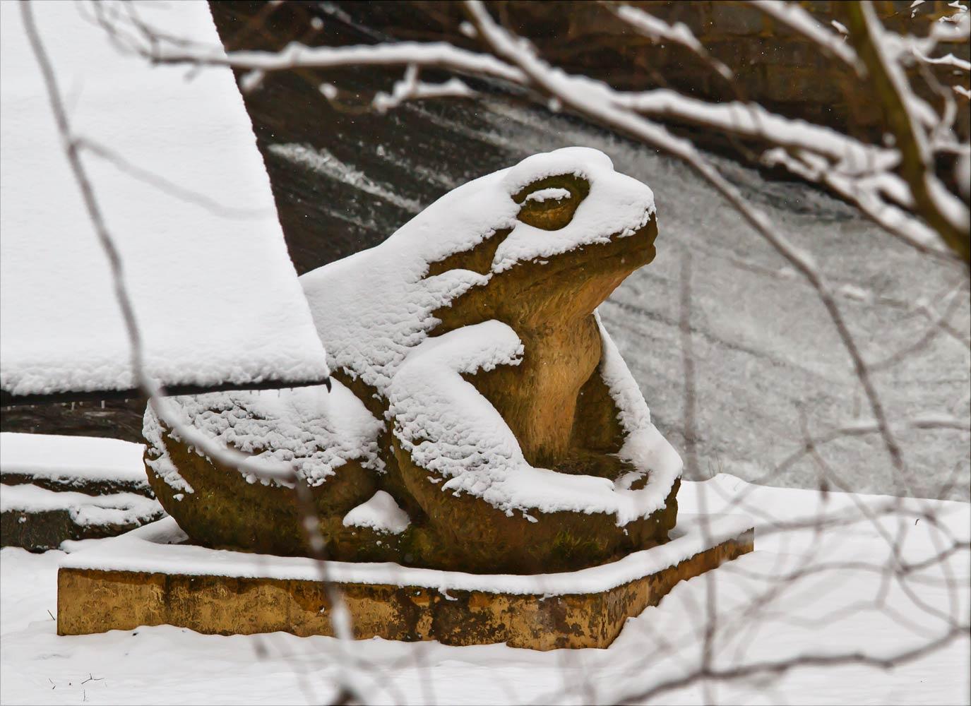 Каменная жаба у речного потока во Влашимском парке