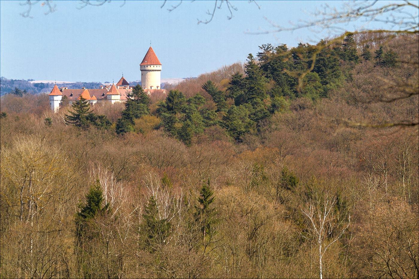 Вид на замок Конопиште с холма Хвоен