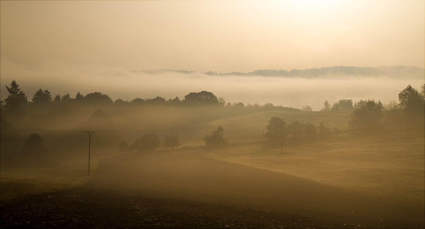 Утренний туман у Влтавы возле Слапской плотины