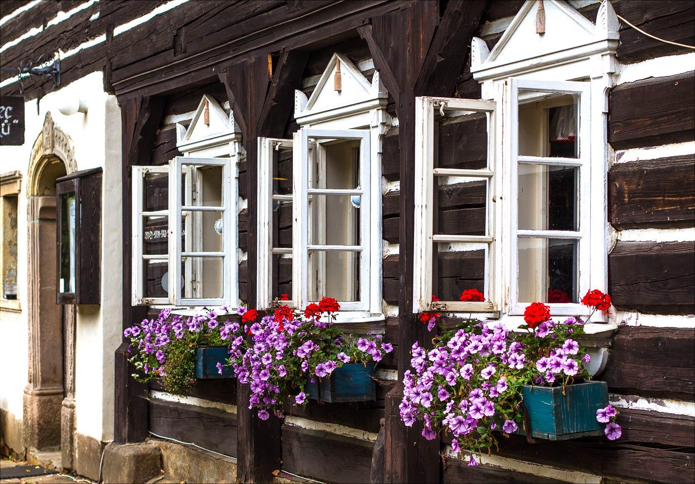 Цветы на старом доме