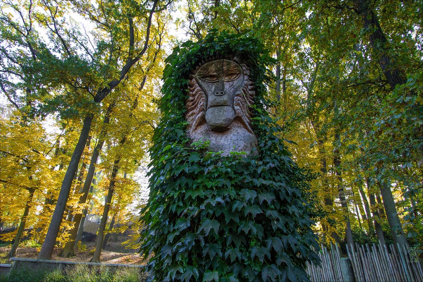 Осень а Злинском зоопарке