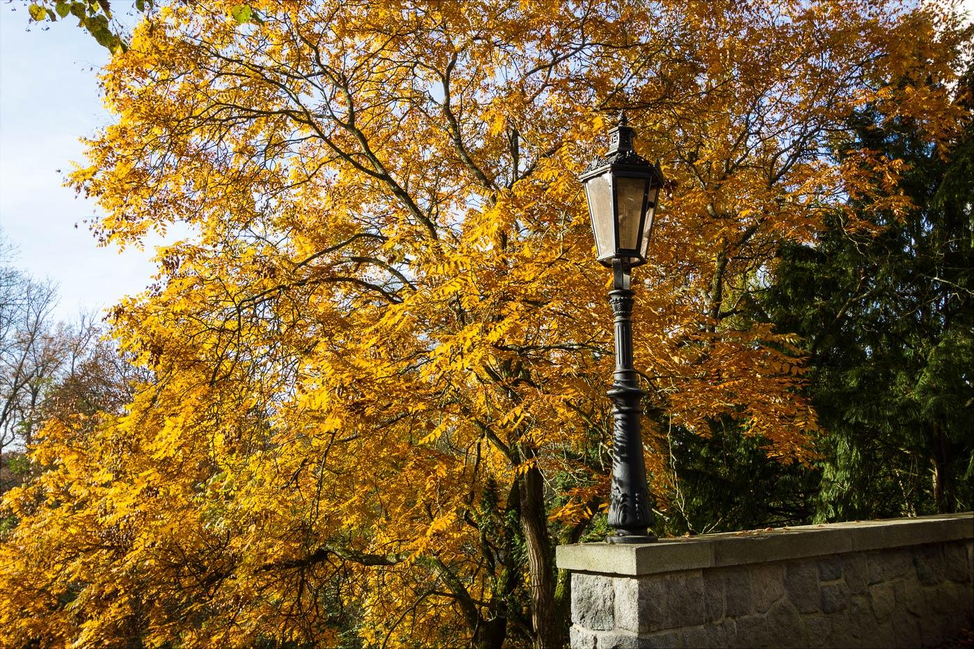 Осень в парке Конопиште
