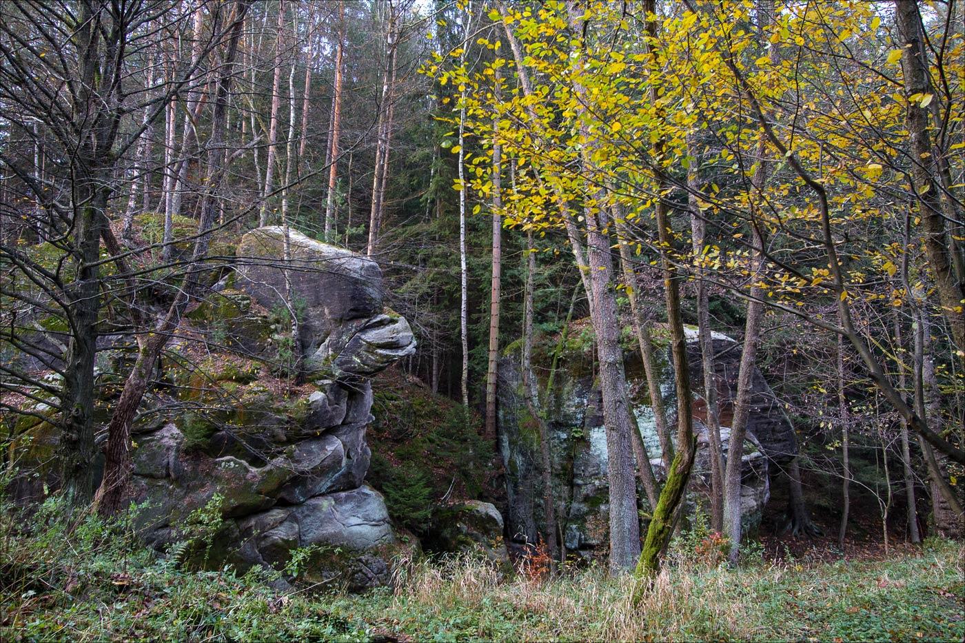 Скала Сидящая горилла, Павлинин каньон, Чешская Швейцария