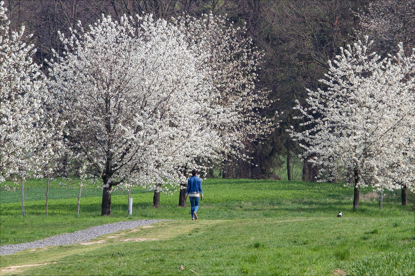 Фото с обеденной прогулки