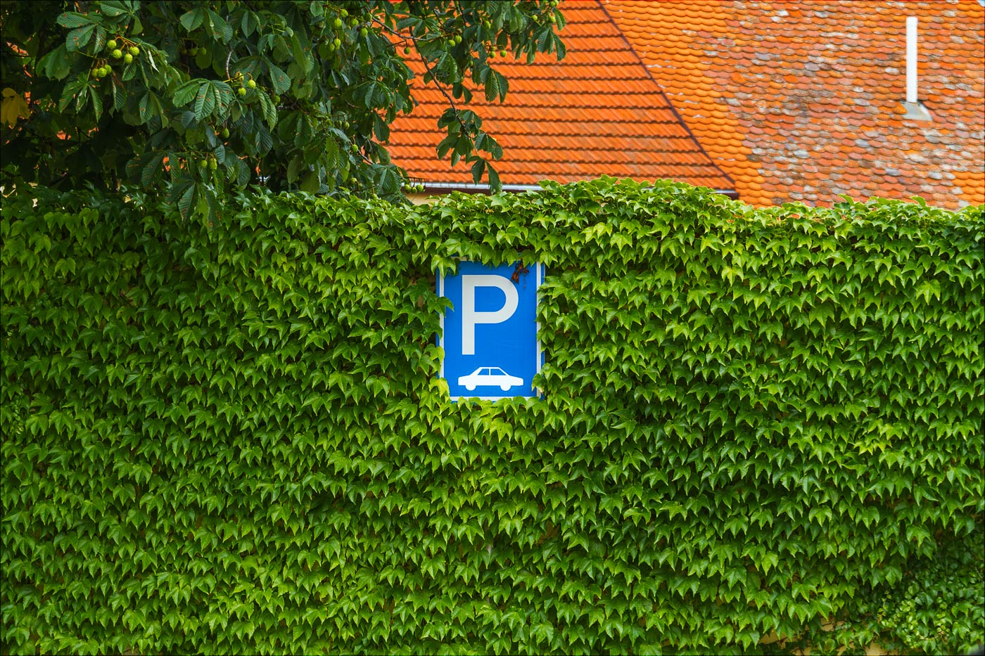 Парковка в зелени