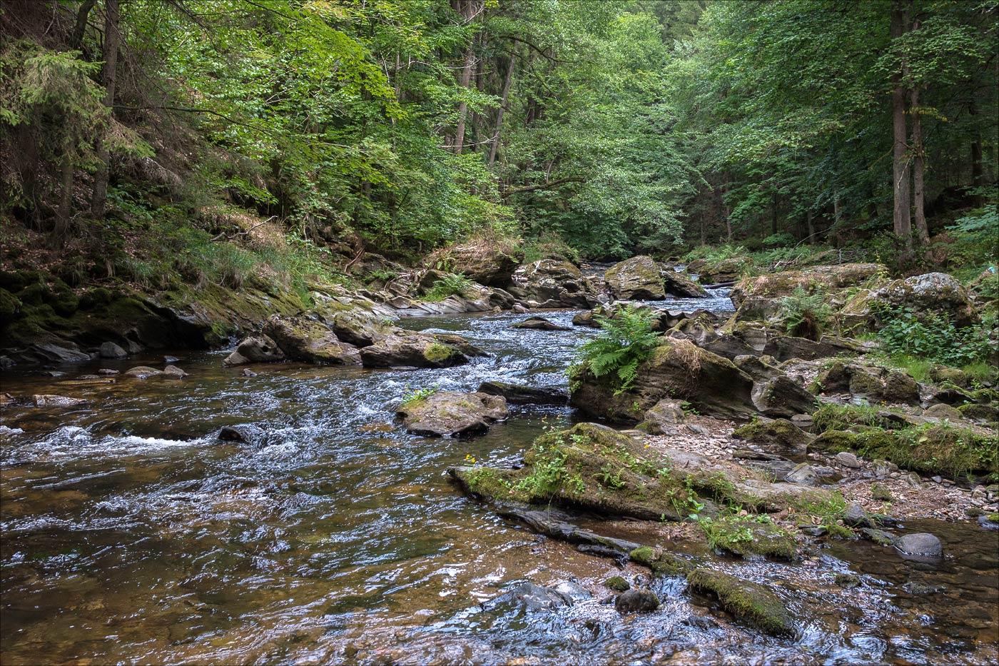 Прогулка у реки Каменице у Крконошских горах