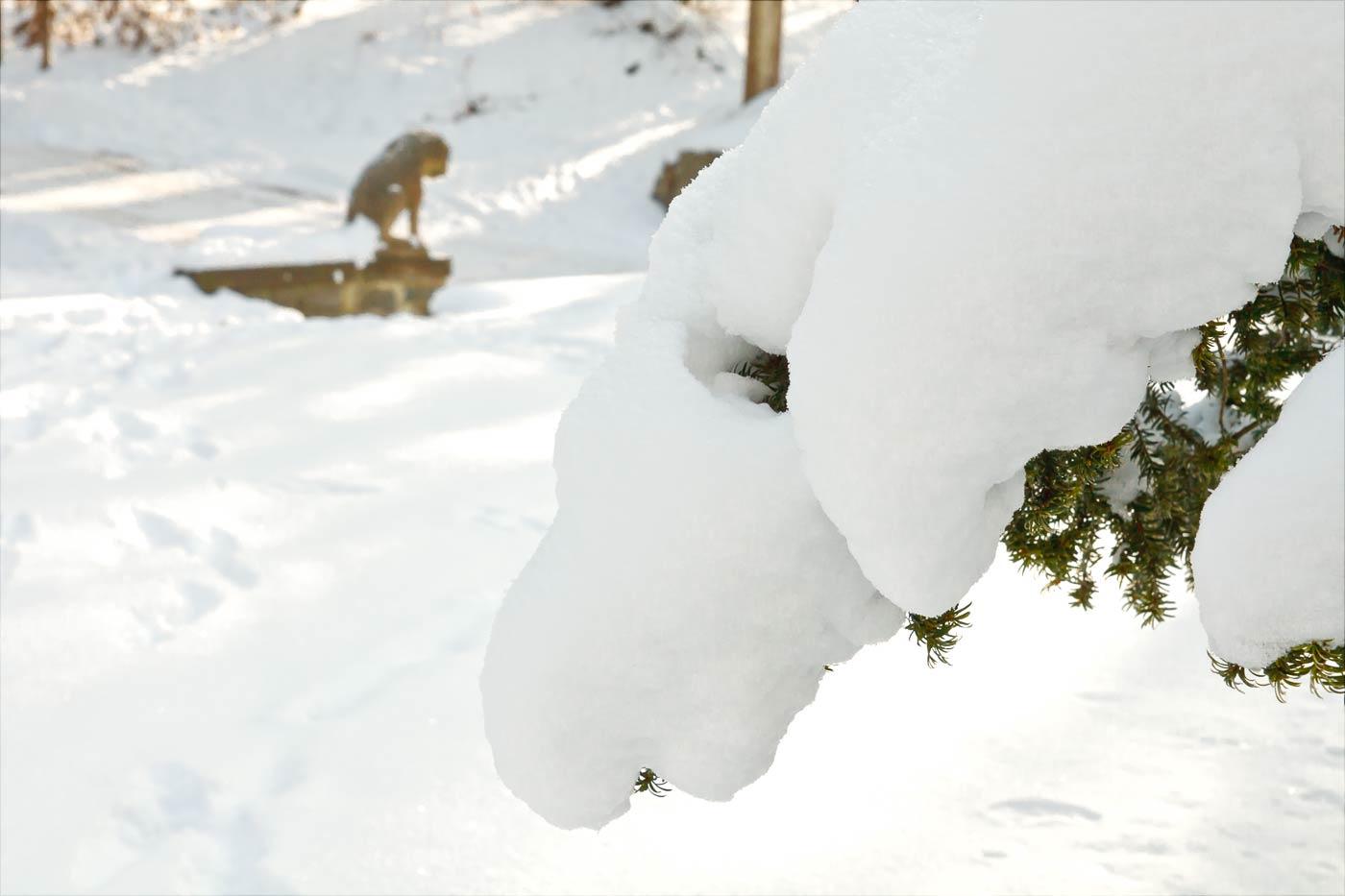 Снежная зима в Конопиште (11 лет назад)