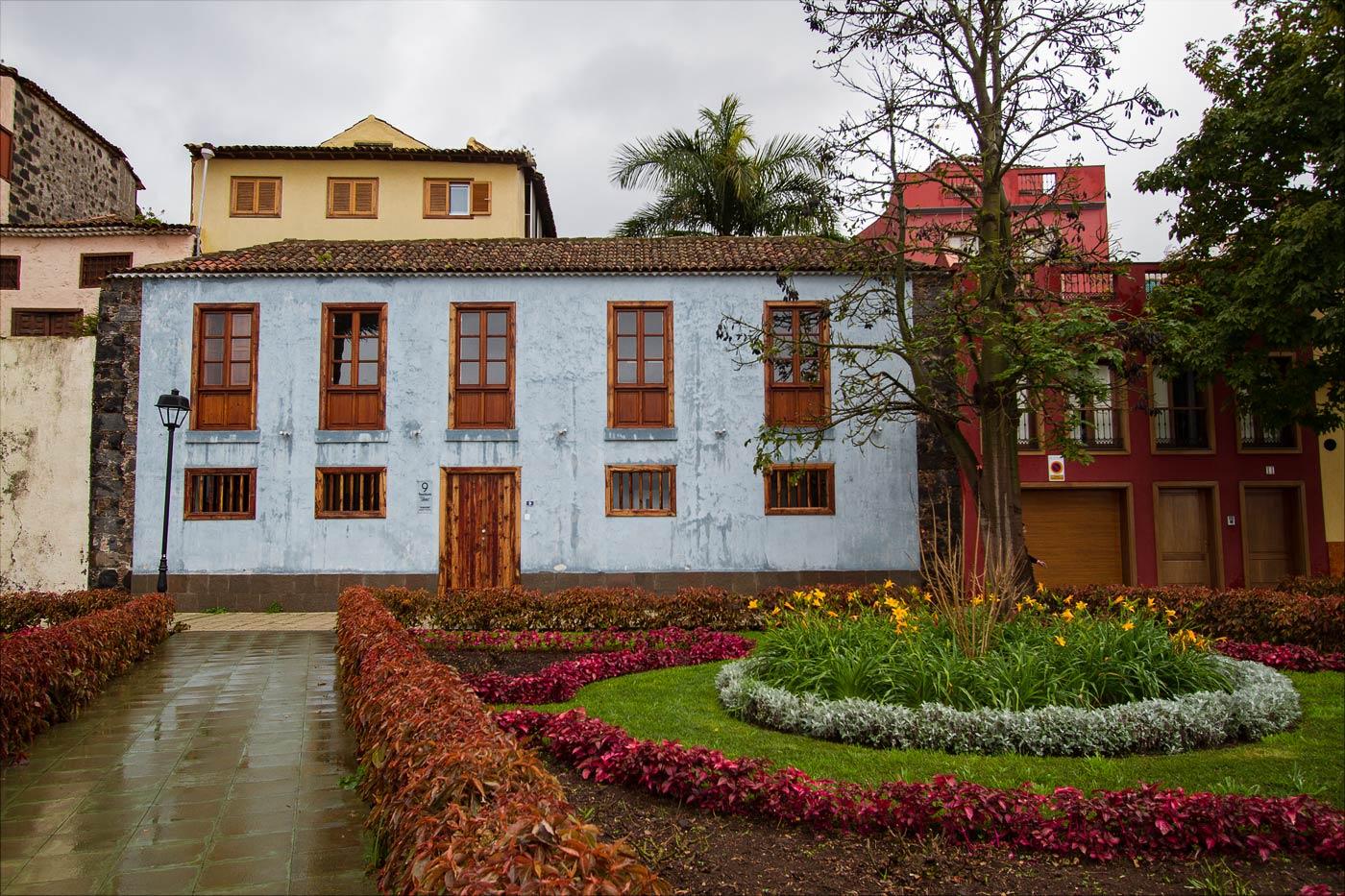 Ла-Оротава после дождя, Тенерифе
