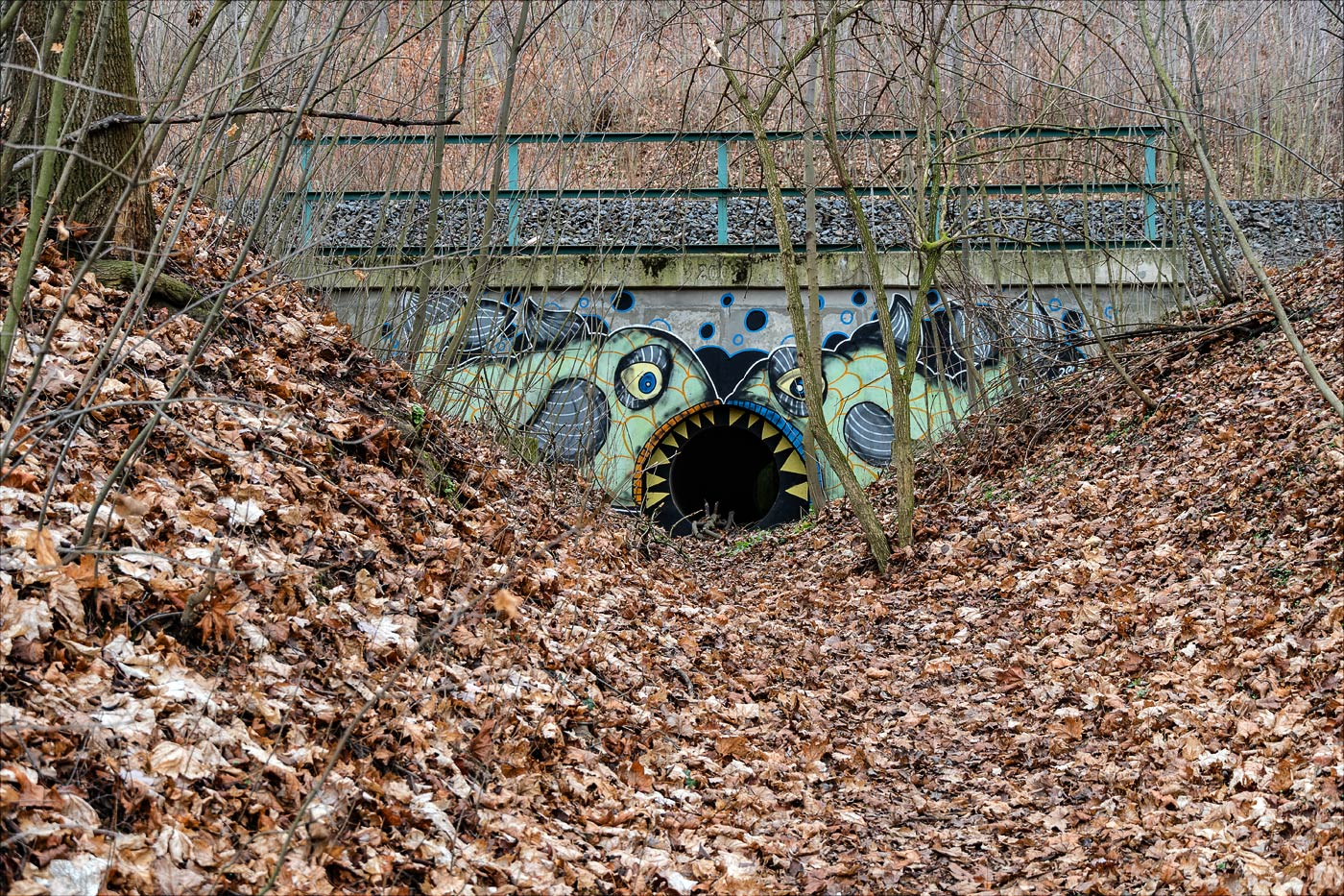 Лаз под железной дорогой