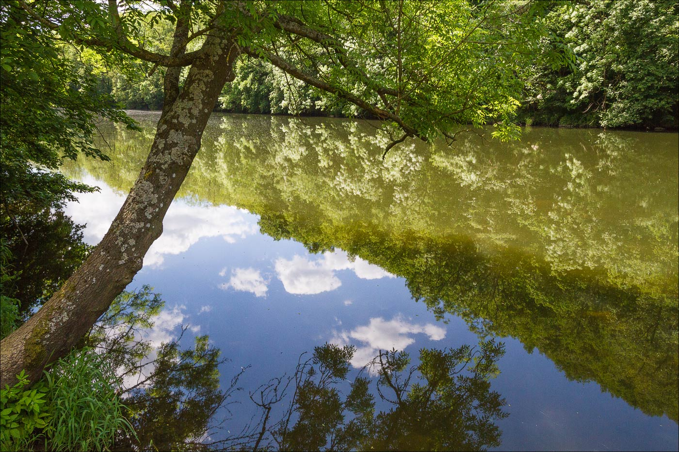 Национальный парк Подийи, Южная Моравия