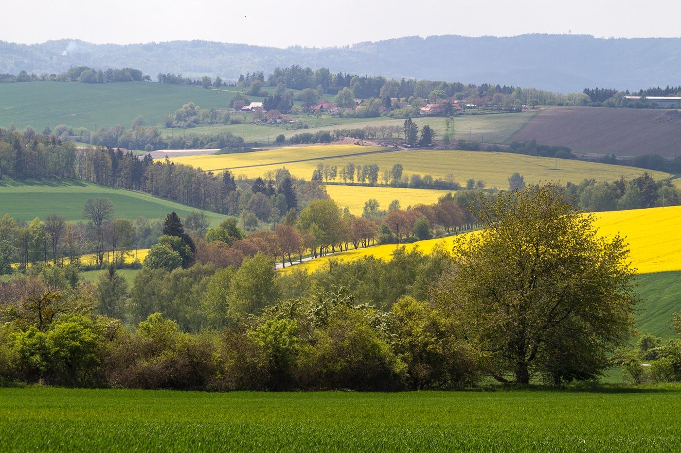 Весна в Чешской Сибири
