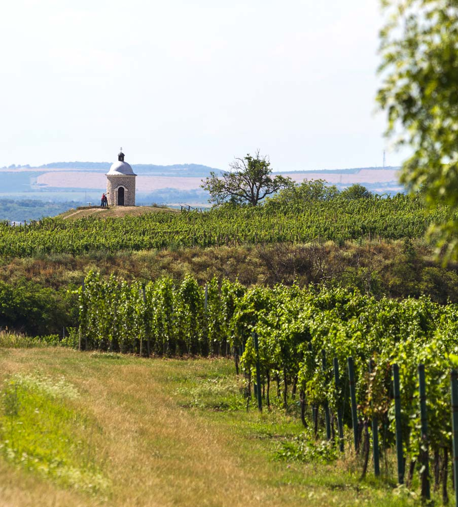 Часовенка на холме среди виноградников у Велке Биловице, Южная Моравия