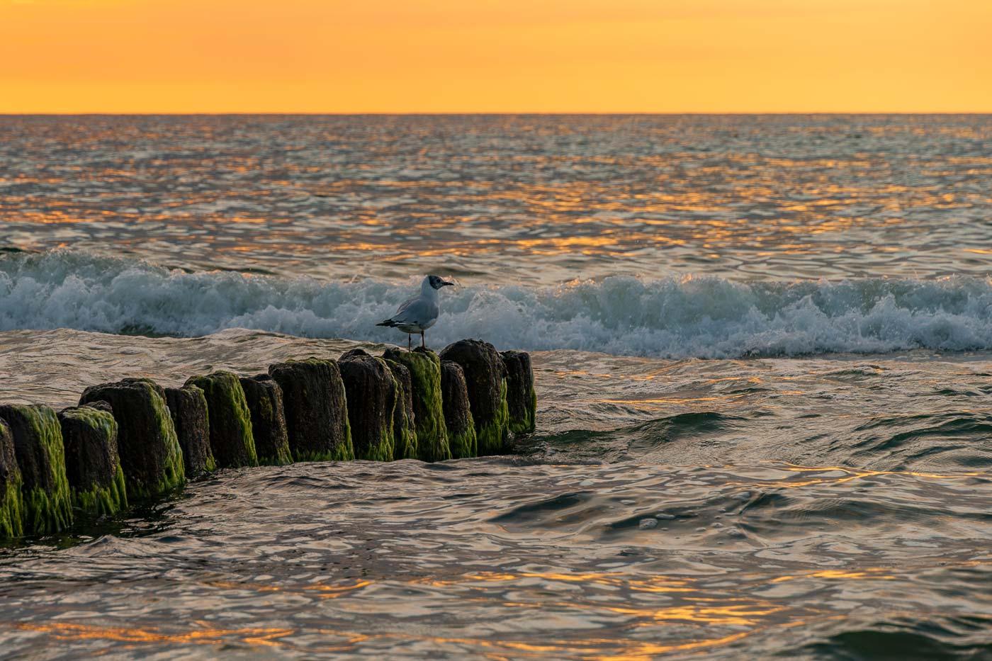 Балтийском море, Мржежино, Польша