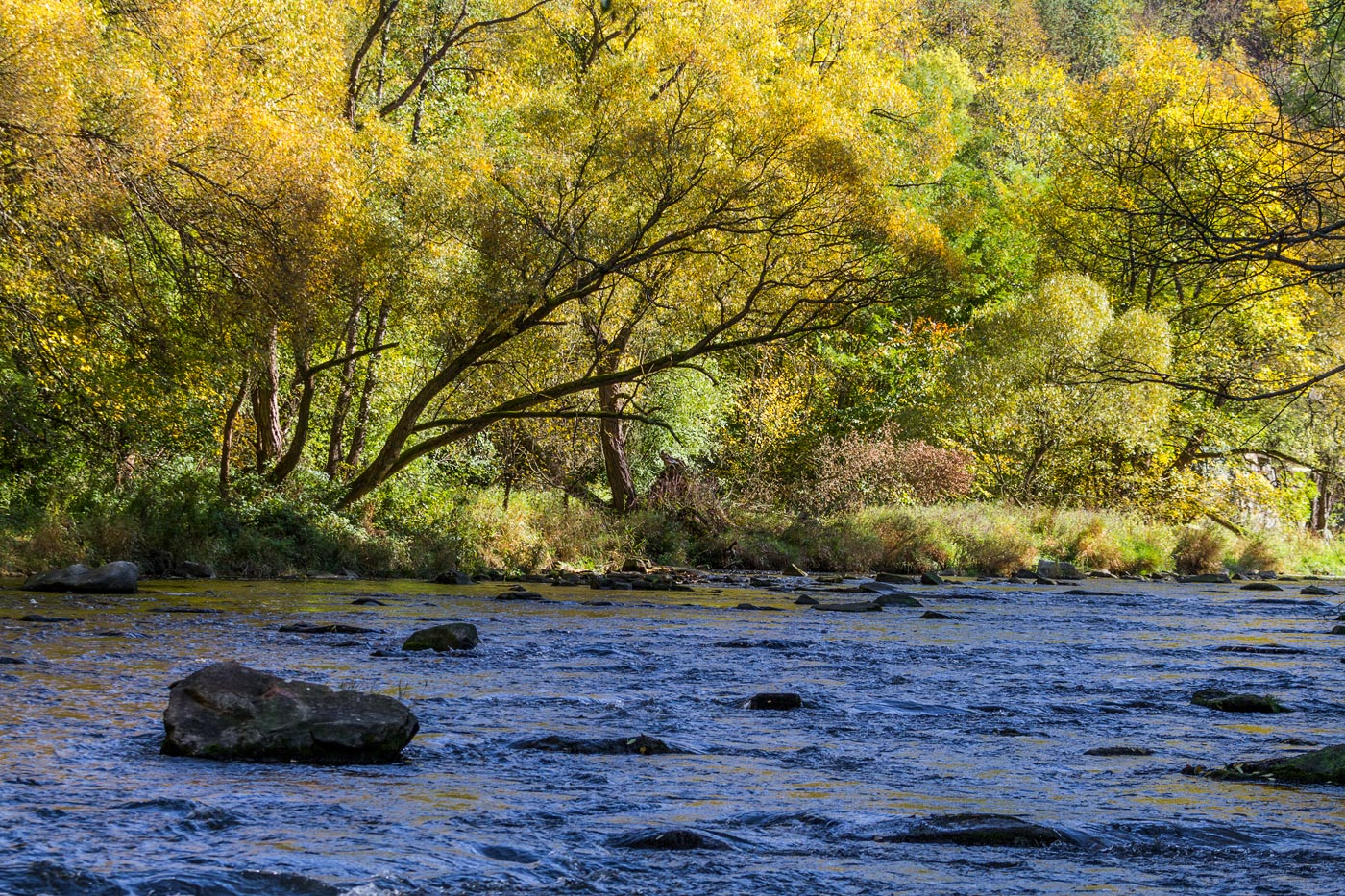 Осень на реке Дие, Южная Моравия