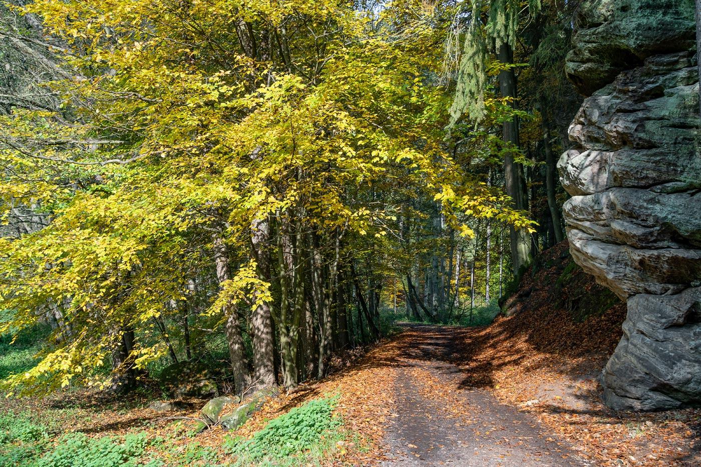 Осень в Чешском рае, природный заповедник Подтросецка удоли