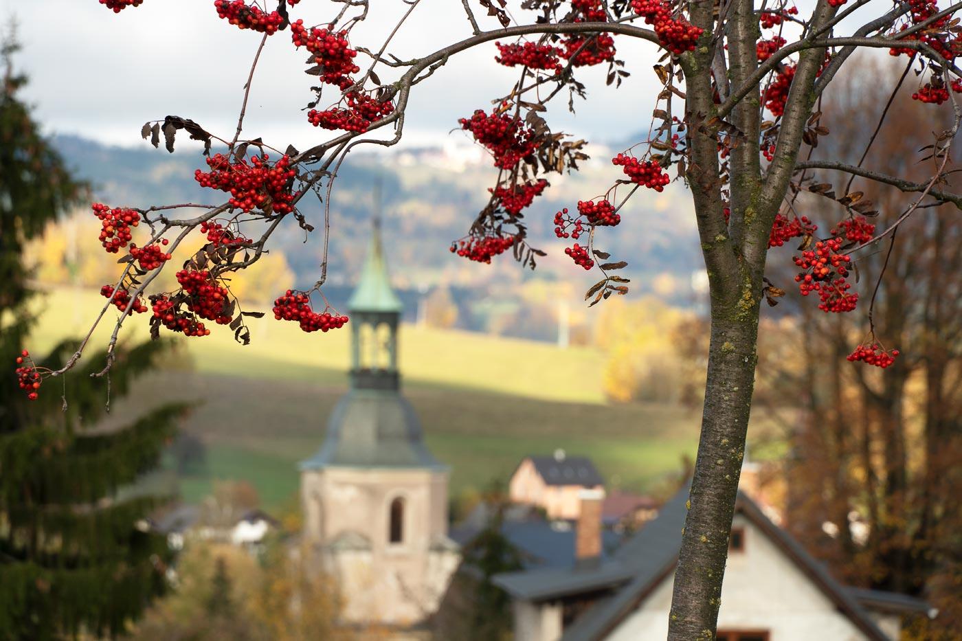 Осень в Северной Чехии