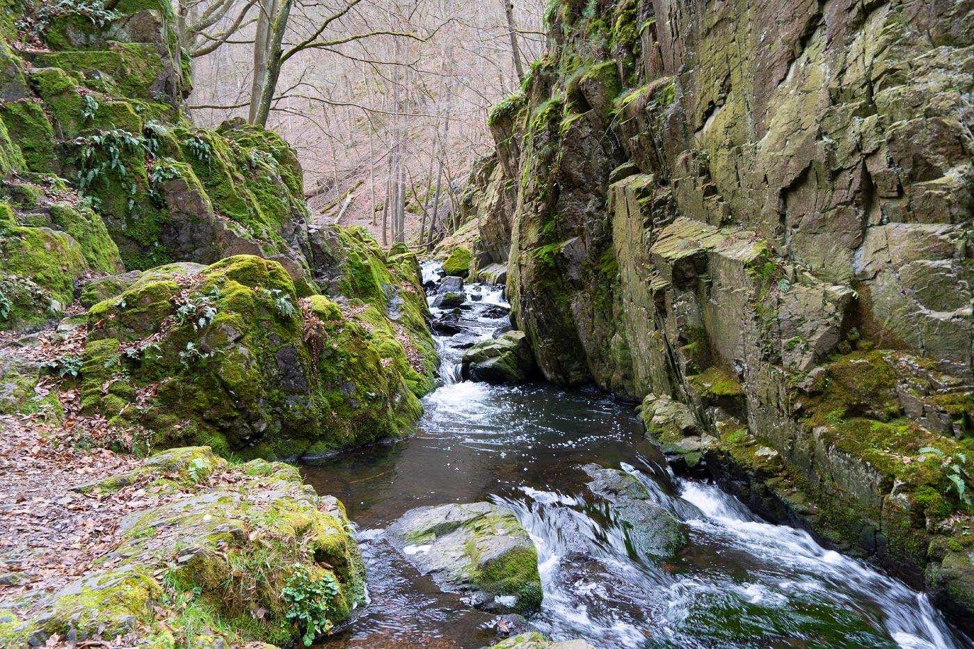 Прогулка вдоль Збирожского потока