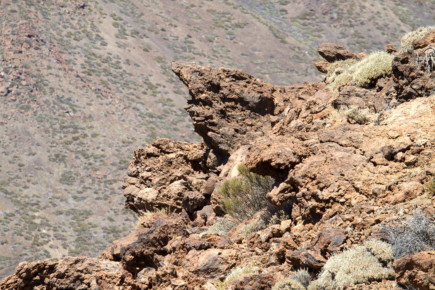 Вулканические скульптуры в кальдере вулкана Тейде