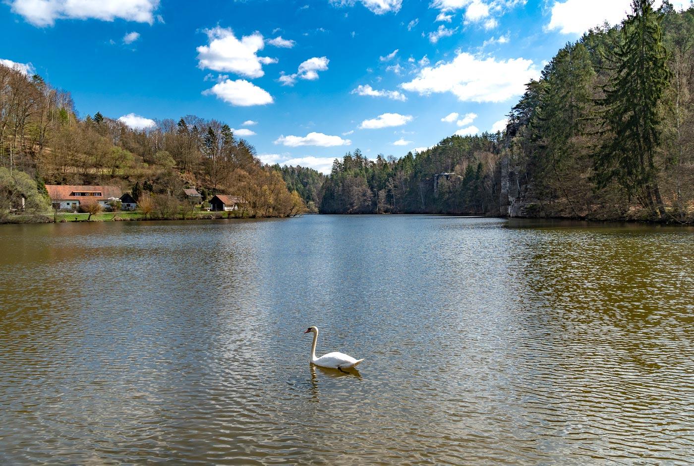 Лебедь, природная резервация Подтросецка удоли