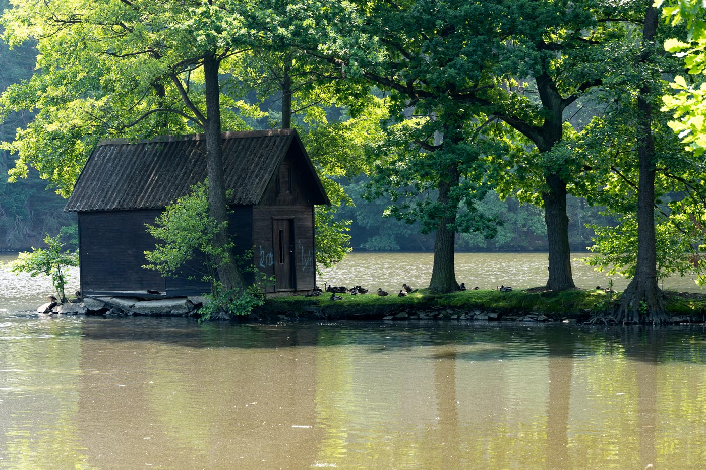 Домик на озере, Каменице