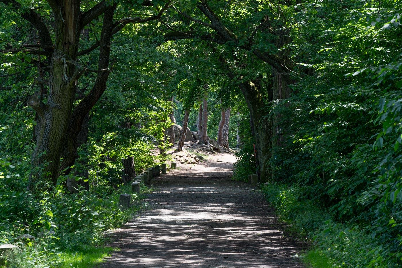 Прогулка вдоль озер у Каменице (Kamenice)