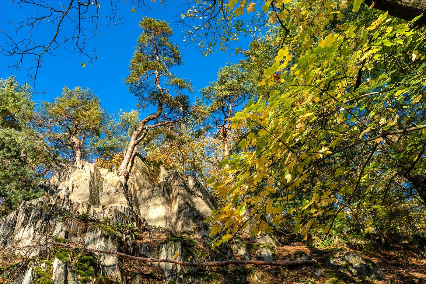 Скальные террасы в Пругоницком парке