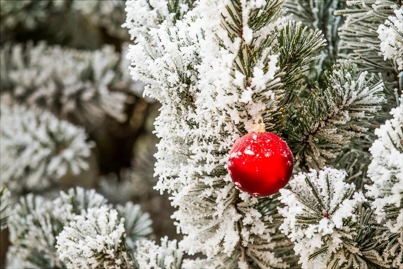 Немного снега в конце праздников